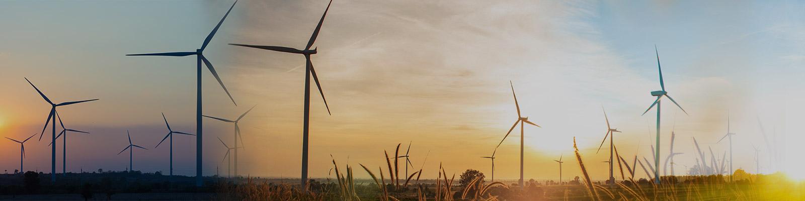 Enalmex Energía Eólica.